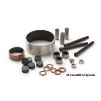 SECONDARY CLUTCH REBUILD KIT - WE213215