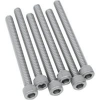 BOLTS (FOR 4 DISCS) STAINLESS STEEL 6- PACK - 404-7206