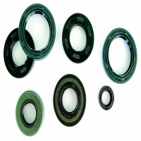 FORK OIL SEAL  RSA 33X45X8/10,5